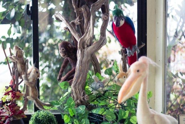 お店の出窓がジャングルに?!