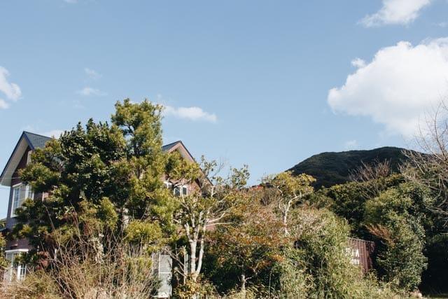工房と裏山